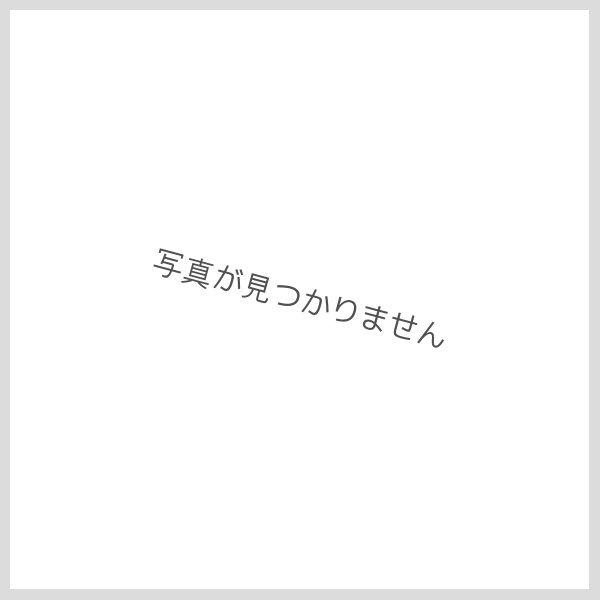 画像1: 感謝いっぱいTシャツ虹柄 (1)