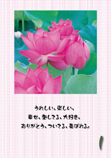 画像1: 蓮花繋がり暦|小林正観日めくりカレンダー (1)